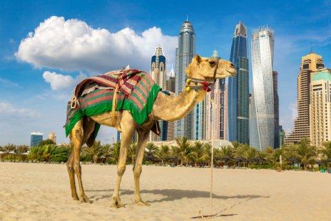 Дубайские застройщики сообщают о резком росте спроса на недвижимость со стороны израильских инвесторов