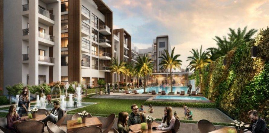Apartment in Jumeirah Village Circle, Dubai, UAE 1 bedroom, 74 sq.m. № 1361
