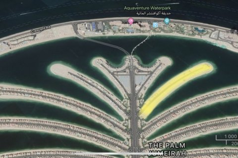 Land in Palm Jumeirah, Dubai, UAE № 1755 - photo 6