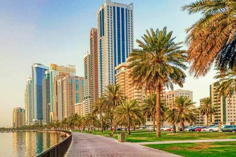 Daily life in the UAE: Interesting facts about the country, laws, and real estate